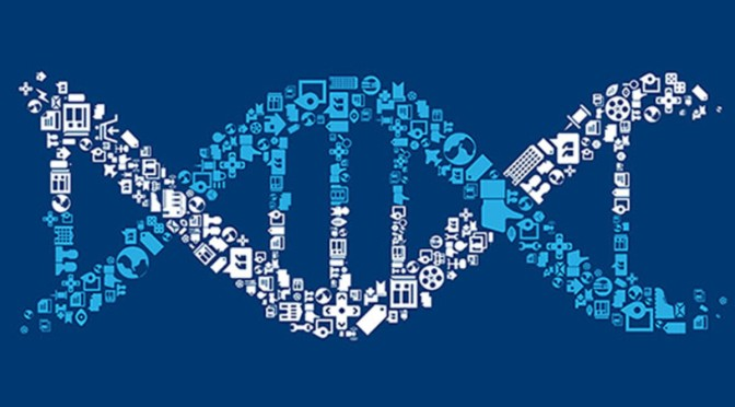 How can genes help GPs in the assessment of fracture risk?